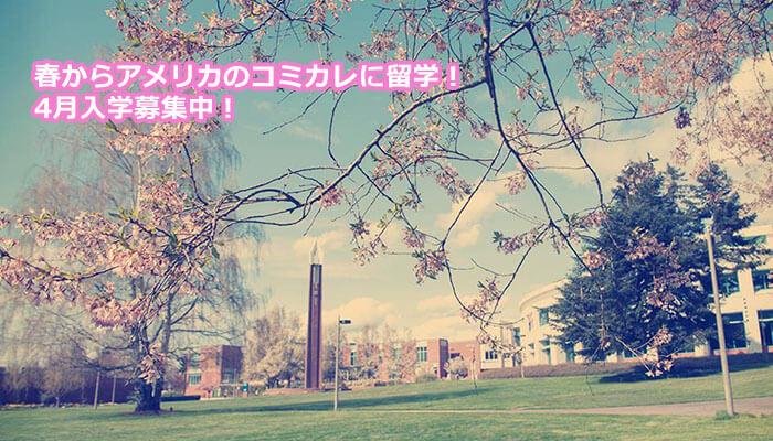 春からアメリカのコミュニティカレッジに留学!4月入学募集中!